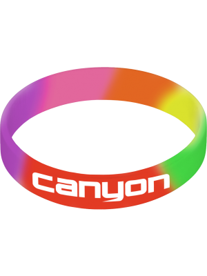 Printed Silicone Wristband- Rainbow with printing